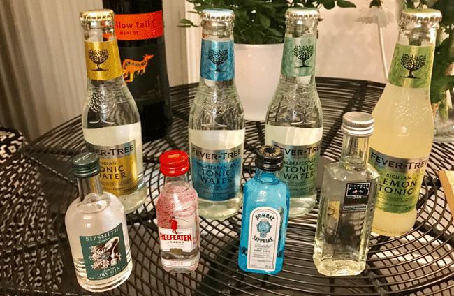 הבריטים אוהבים לשתות – אבל בעיקר ומעל לכל אוהבים ג׳ין, עם טוניק או בלעדיו