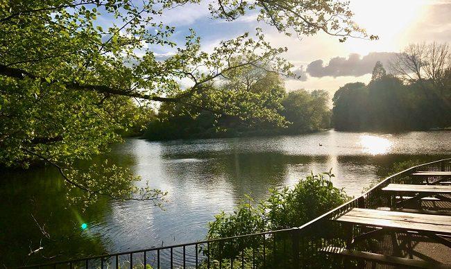 פארק מקסים ומשופע במים, צמחיה ומקומות ישיבה, אבל לא רק. באטרסי פארק
