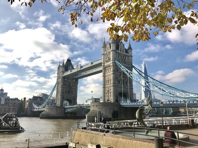 גשר המצודה והשארד