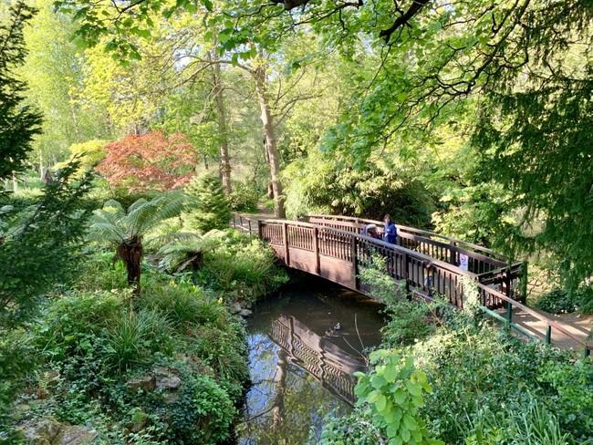 הרבה מים, גשרים ואווירה פסטורלית במיוחד. פארק קלסי