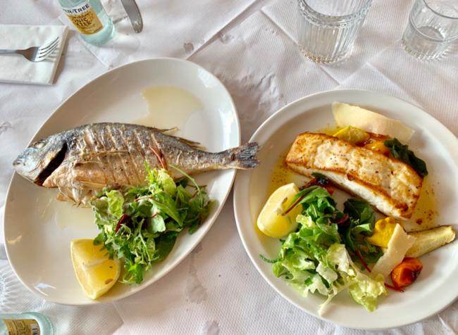 ההמלצה שלי – גם הדגים כאן מעולים