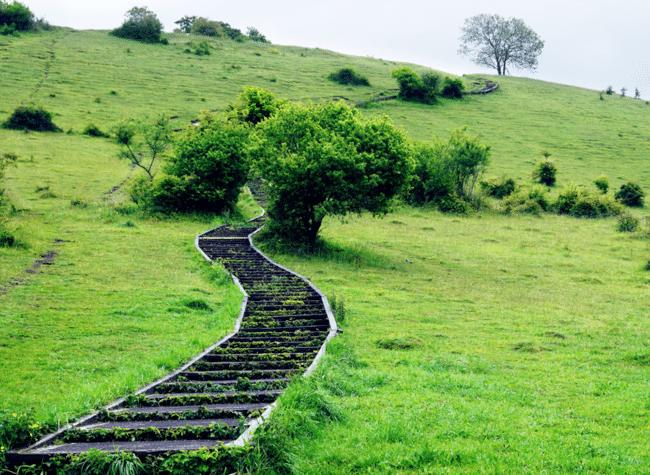 מדרגות או לא להיות. סנט קתרין היל