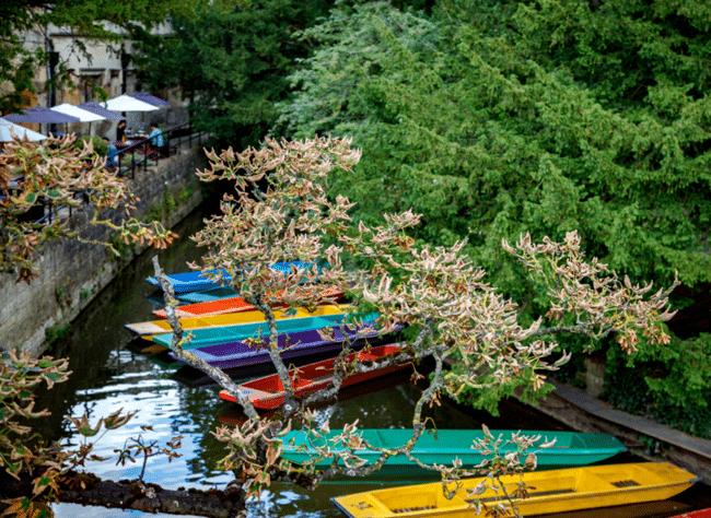 סירות צבעוניות על הנהר באוקספורד