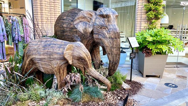 2 פילים מלחכים עשב